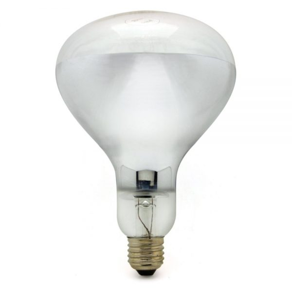 Transparent lampa