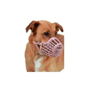 Brnjica za psa