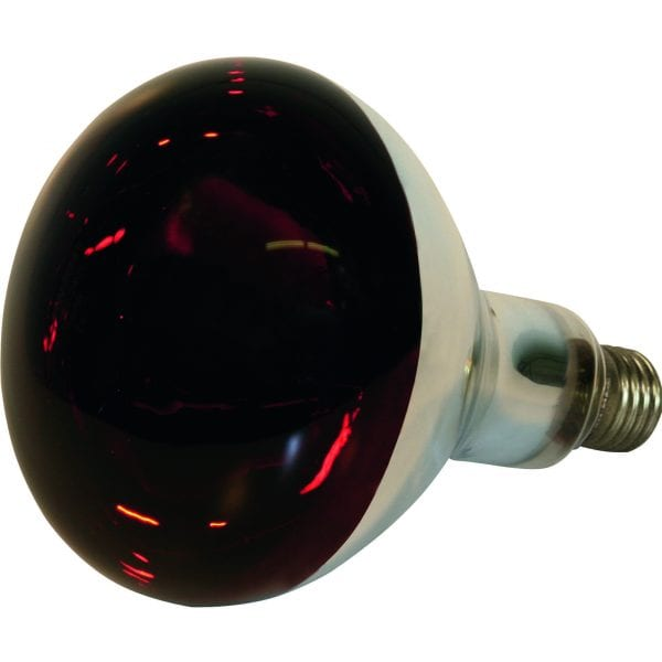 Crvena lampa