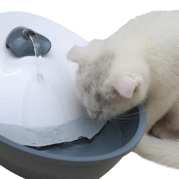 Pojilica za pse i mačke fontana