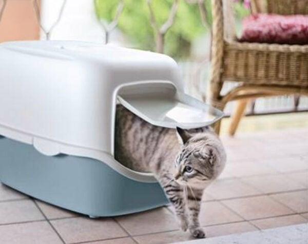 Toalet za mačke